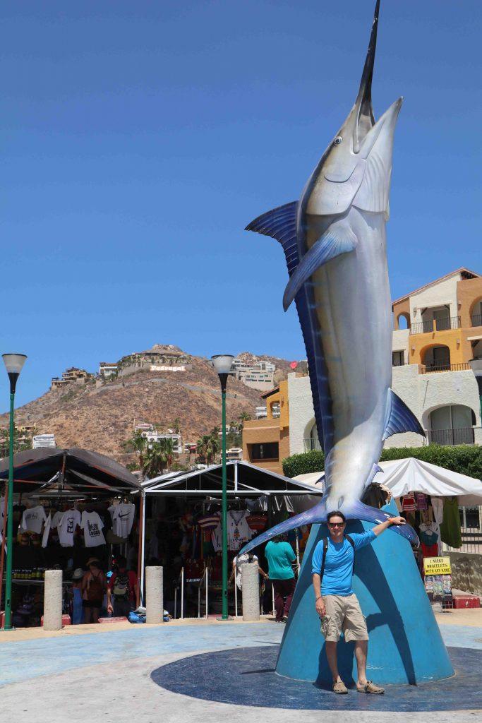 guide, pêche, thon, thon rouge, liche, rhône, guide de pêche au thon, guide de pêche liche, guide de pêche méditerranée, pêche thon, pêche liche, pêche leurres, port sai